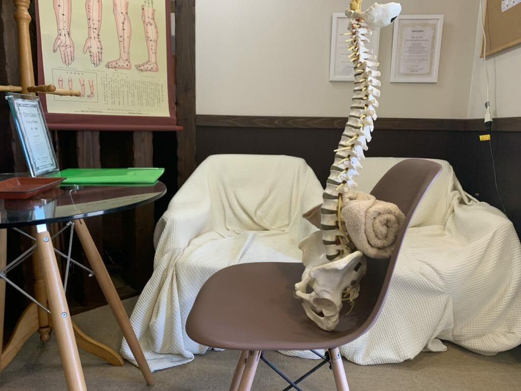 クッションの代わりに背もたれにタオルを入れてデスクワーク(骨模型)