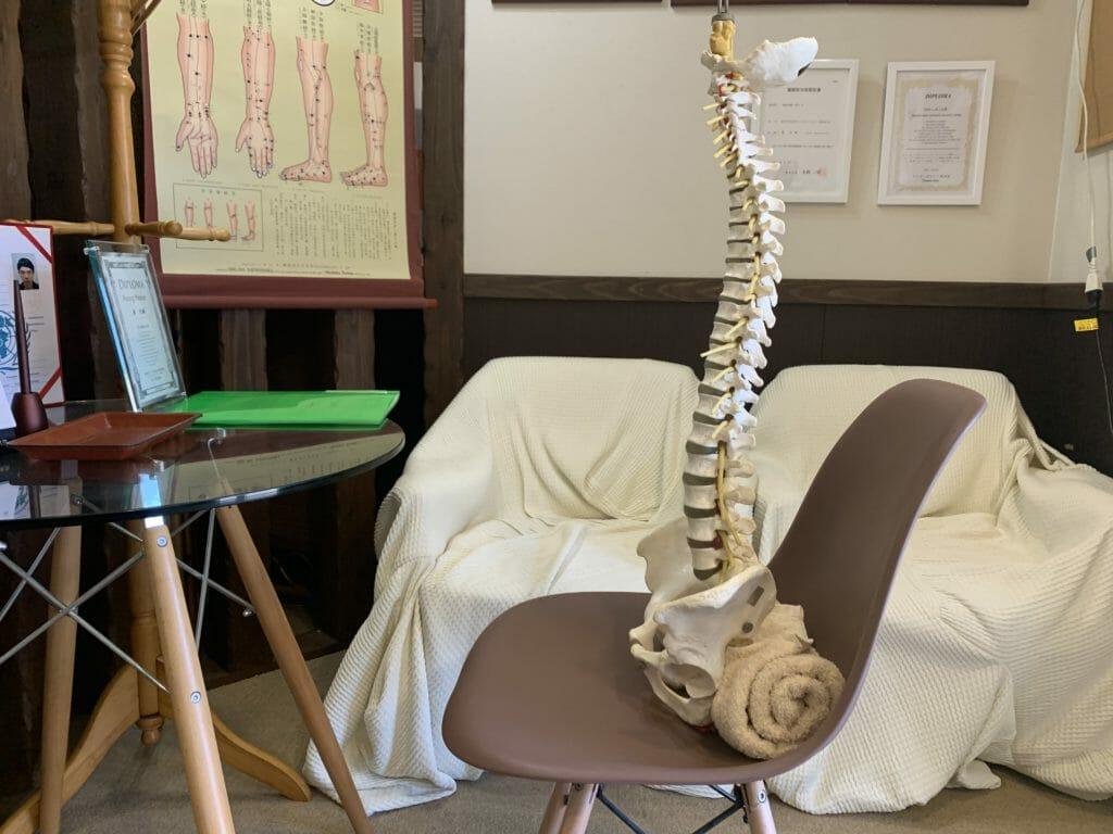 クッションの代わりに座面にタオルを入れてデスクワーク(骨模型)