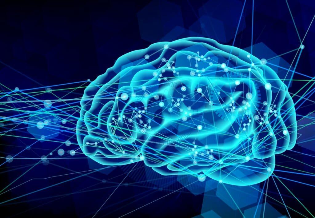 脳の働きを高める方法